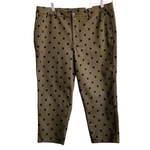 Suko Plus Olive Polka Dot Capri Pants NWT